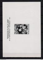 ZNP 7 JAMES ENSOR  ZWART WIT VELLETJE 1975 (fr) - Feuillets Noir & Blanc