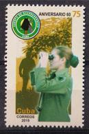 Cuba 2019 60th Anniversary Of Safe Wood 1v MNH - Nuovi