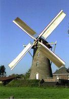 EERDE - Meierijstad (N.Br.) - Molen/moulin - Prachtige Nieuwe Kaart Van Bergmolen Sint-Antonius Opgezeild En In Werking - Netherlands