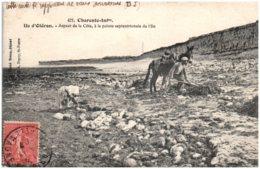 17 ILE D'OLERON - Aspect De La Côte, à La Pointe Sptentrionale De L'Ile - Ile D'Oléron