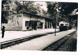 HUNG-103   BUDAPEST : Uttorovasut. Elore Allomas ( Tram-station) - Hungary