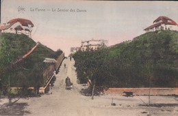 De Panne La Panne Le Sentier Des Dunes - De Panne