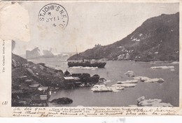 VIEW OF THE ICEBERG OF THE NARROWS, ST JOHNS, NEWFOUNDLAND. THE GARLAND SERIES CIRCULEE 1904 TIMBRE ARRACHE - BLEUP - Terre-Neuve & Labrador