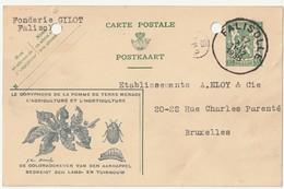 Falisolle Prop Nr.20 - Cartes Postales [1934-51]