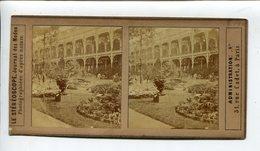 Exposition Horticulture Paris 1898 - Stereoscopic
