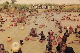 Nigeria Agunsu Rivière Sokoto Scène à La Fête De La Pêche Annuelle  (2 Scans) - Nigeria