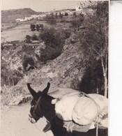 ALPUJARRA SOPORTUJAR 1954 Vue D'ensemble Photo Amateur Format Environ 7,5 Cm X 5,5 Cm ESPAGNE - Places