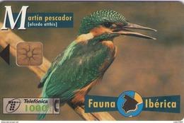 TELECARTE ESPAÑA ESPAGNE FAUNA MARTIN PESCADOR - Autres