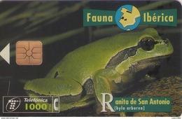 TELECARTE ESPAÑA ESPAGNE FAUNA RANA - Autres
