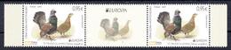 Montenegro 2019 Europa CEPT National Birds Fauna Blackcock Tetrao Urogallus Middle Row MNH - 2019