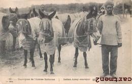 INDE INDIA CONVOYEUR DE L'ARMEE INDIENNE MULET TYPES DE SOLDATS HINDOUS GUERRE HINDOUS INDIAN MILITARY - War 1914-18