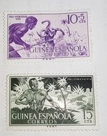 N335/337 1954 Pro Autochtones Chasse MNH LUXE *** - Spanish Guinea