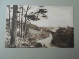 ANGLETERRE DORSET ROAD TO CHARMOUTH... - Angleterre