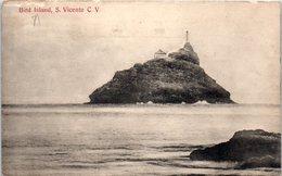 Bird Island , S. Vicente C.V. Cabo Verde - Cape Verde