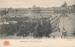 CPA - Belgique - Brussels - Bruxelles - Le Jardin Botanique - Forêts, Parcs, Jardins