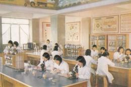 North Korea Pyongyang - Palace Of Students , Agronomy Study - Korea, North