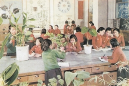 North Korea Pyongyang - Palace Of Students , Plants , Vegetation Study - Korea, North