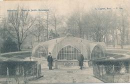 CPA - Belgique - Brussels - Bruxelles - Dans Le Jardin Botanique - Forêts, Parcs, Jardins