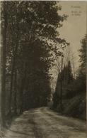 Esneux // Route De La Salte 1911 - Esneux