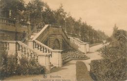 CPA - Belgique - Brussels - Bruxelles - Escalier Monumentale Du Jardin Botanique - Forêts, Parcs, Jardins