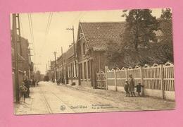 C.P. Bazel-Waas  = Rupelmondestraat - Kruibeke