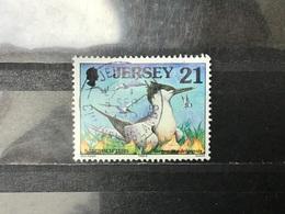 Jersey - Vogels (21) 1998 - Jersey