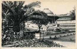 CPSM - Belgique - Brussels - Bruxelles - Jardin Botanique - Forêts, Parcs, Jardins