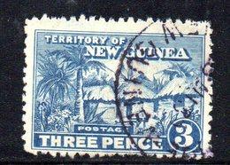 APR1180 - NUOVA GUINEA 1925 ,  Yvert N. 19 Usato  (2380A) I - Papua Nuova Guinea