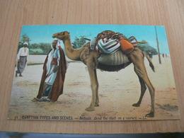 CP01/ EGYPTE SCENES TYPES PRET POUR LE VOYAGE / CARTE NEUVE - Egypte
