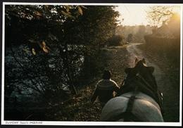 1984  --  ATTALAGE PRES DE JUVIGNY SOUS ANDAINE    3R438 - Vieux Papiers
