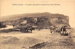 76-CRIEL-PLAGE- TRANSPORT DES GALETS ET POINTE DU MONT JOLI-BOIS - Criel Sur Mer