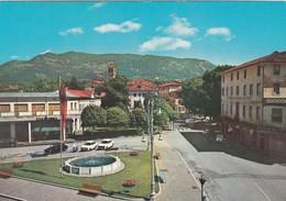 CARTOLINA - POSTCARD - UDINE - TARCENTO - PIAZZA LIBERTA' - Udine