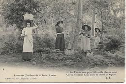 40 LANDES RESINIERES  FEMMES EN CUEILLETTE TOP ANIMATION BEAU PLAN ED BERNEDE - France