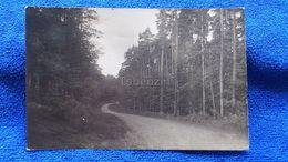 Neuglobsow Germany - Neuglobsow