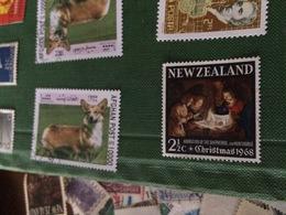 NUOVA ZELANDA NATALE 1968 - Stamps