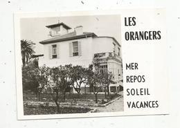 Cp, Hôtels & Restaurants , LES ORANGERS , Chemin De L'Ermitage , 06, CAP D'ANTIBES , Vierge,  Photo Robert - Hotels & Restaurants