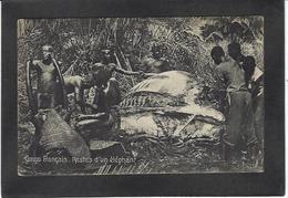 CPA éléphant Chasse Ivoire Congo Français Non Circulé - Frans-Kongo - Varia