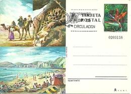 """Tarjeta Postal, Las Palmas (Baleari, Spagna) Montana De Fuego, Playa De Las Canteras, Annullo """"Primer Dia De Circulat."""" - Palma De Mallorca"""