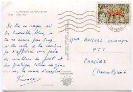 Senegal - Postcard - Carte Postale - Senegal (1960-...)