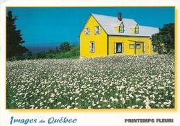Canada - Images Du Québec - Printemps Fleuri - 1 Joli Timbre Philatélique Au Verso - Voir Scan - Cpm - écrite - - Quebec