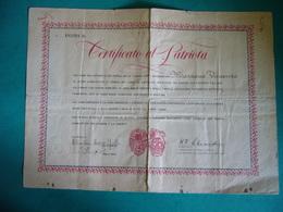 CERTIFICATO DI PATRIOTA PER LA LIBERAZIONE DELL'ITALIA  FIRMA STAMPATA GENERALE ALEXANDER - Documenti