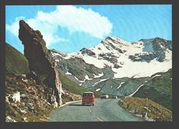 Grossglockner Hochalpenstrassen - Vintage VW Transporter Bus - Autriche