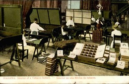 CUBA - Carte Postale - La Havane - Une Fabrique De Tabac- L 30043 - Ansichtskarten