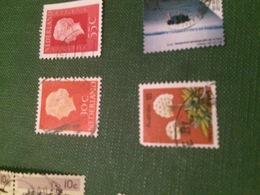 AUSTRALIA I FIORI - Stamps