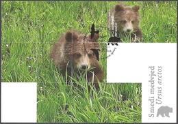 Croatia - Croatian Fauna - Brown Bear, Maximum Card, 2011 - Bears