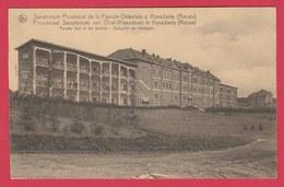 Ronse - Provincial Sanatorium Te Hynsdaele - Zuidgevel En Hovingen ( Verso Zien ) - Renaix - Ronse