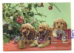 Chien. Dog. Trois Chiots Cockers, Cadeaux Et Boules De Noël - Chiens