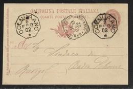 COLLETTORIE RURALI MARCHE - DA COLMURANO A BADIA POLESINE - 9.2.1902. - Interi Postali