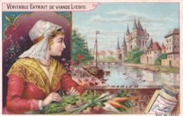 AL58 Veritable Extrait De Viande Liebig, Harlem - Liebig