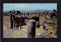 Algérie  / Tébessa ( Bône ) / Les Ruines De La Basilique Romaine - Tébessa